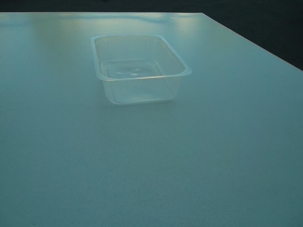 contenitori monouso in ppl per alimenti
